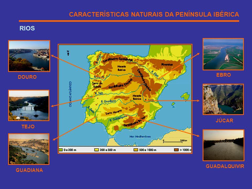 CARACTERÍSTICAS NATURAIS DA PENÍNSULA IBÉRICA RIOS DOURO TEJO GUADIANA EBRO JÚCAR GUADALQUIVIR