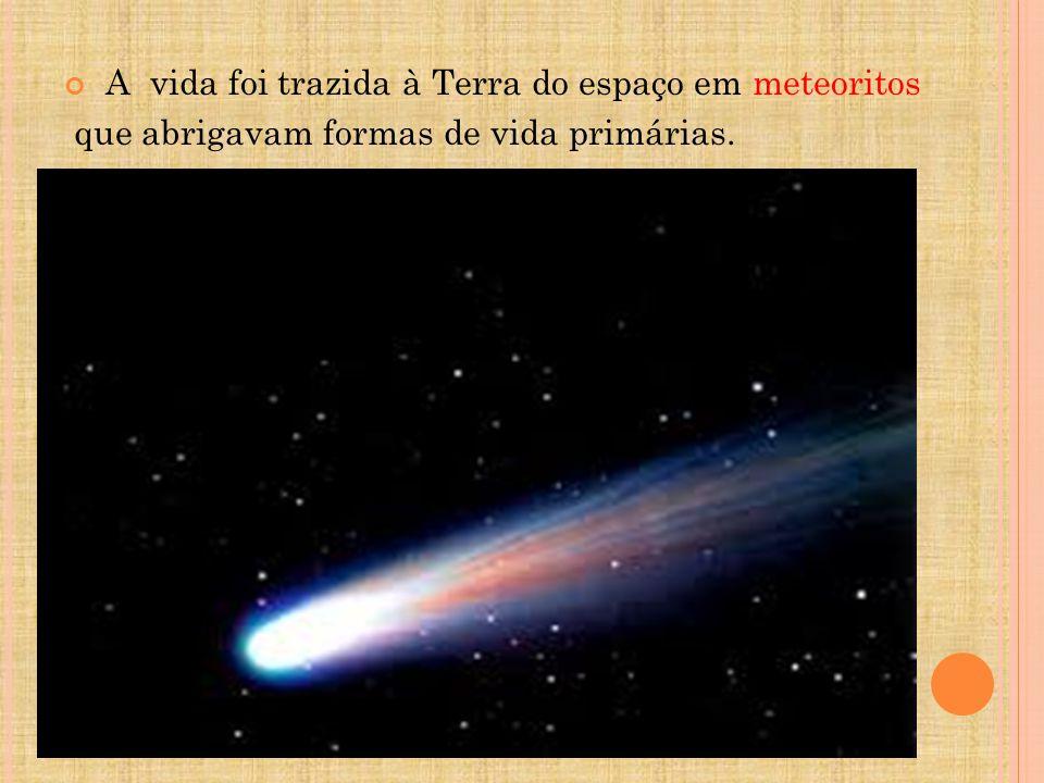A vida foi trazida à Terra do espaço em meteoritos que abrigavam formas de vida primárias.