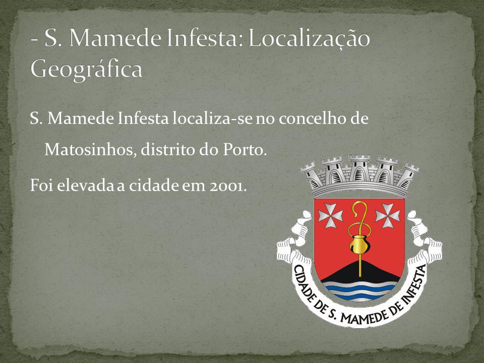 S. Mamede Infesta localiza-se no concelho de Matosinhos, distrito do Porto. Foi elevada a cidade em 2001.