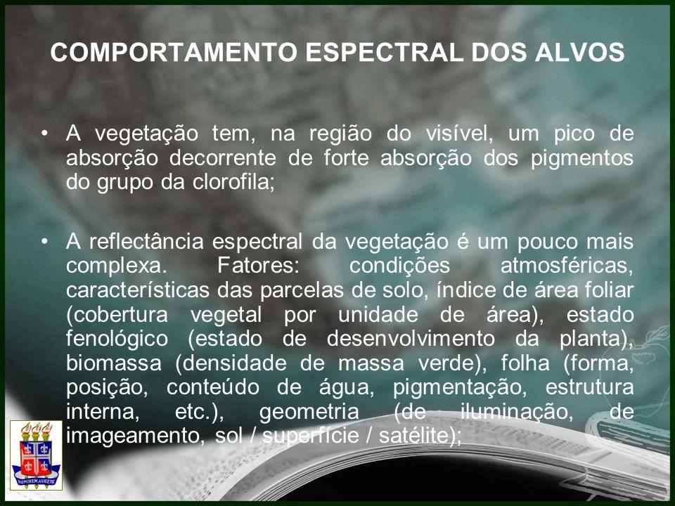 COMPORTAMENTO ESPECTRAL DOS ALVOS A vegetação tem, na região do visível, um pico de absorção decorrente de forte absorção dos pigmentos do grupo da clorofila; A reflectância espectral da vegetação é um pouco mais complexa.