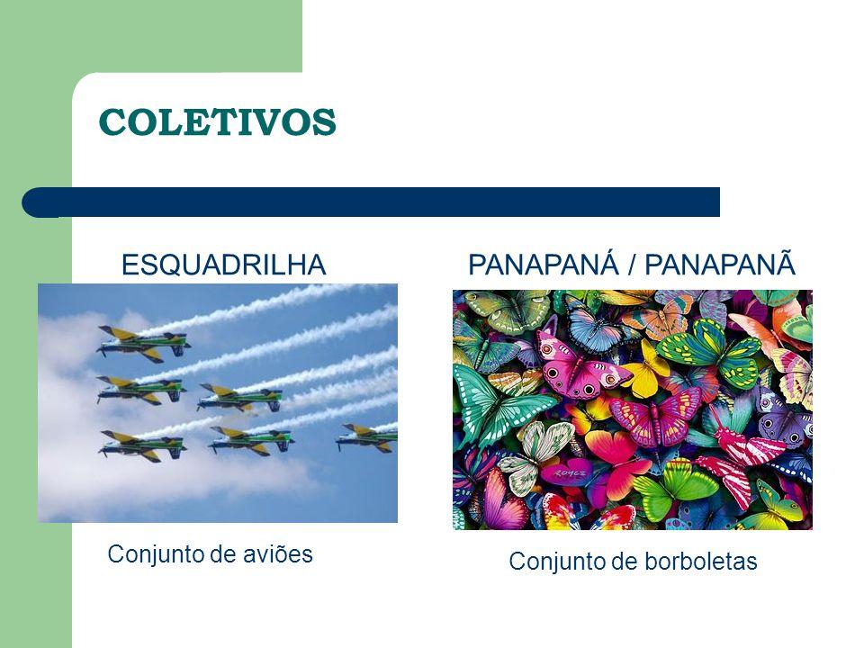 ESQUADRILHA Conjunto de aviões PANAPANÁ / PANAPANÃ Conjunto de borboletas COLETIVOS