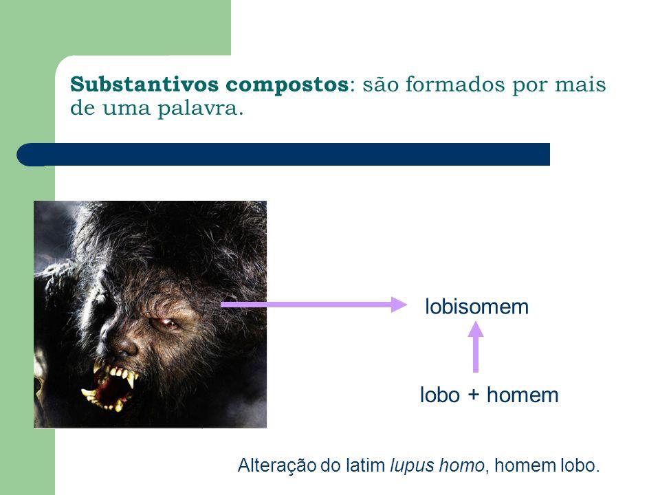 Substantivos compostos : são formados por mais de uma palavra. lobisomem lobo + homem Alteração do latim lupus homo, homem lobo.