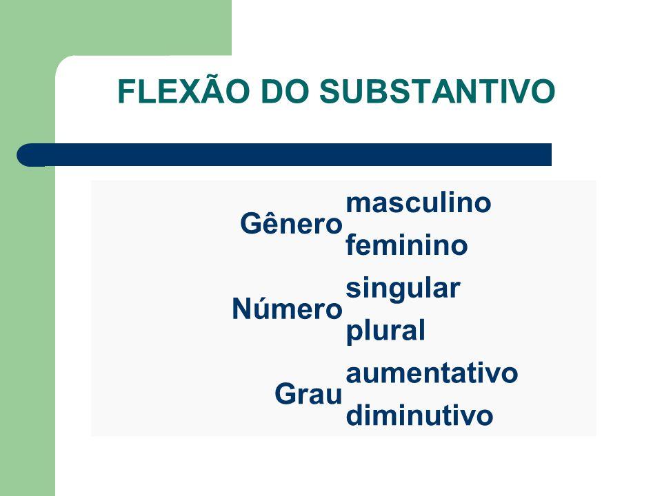 FLEXÃO DO SUBSTANTIVO Gênero masculino feminino Número singular plural Grau aumentativo diminutivo