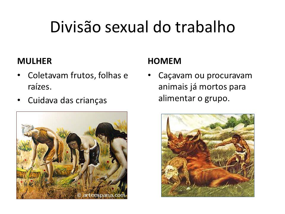 Divisão sexual do trabalho MULHER Coletavam frutos, folhas e raízes.