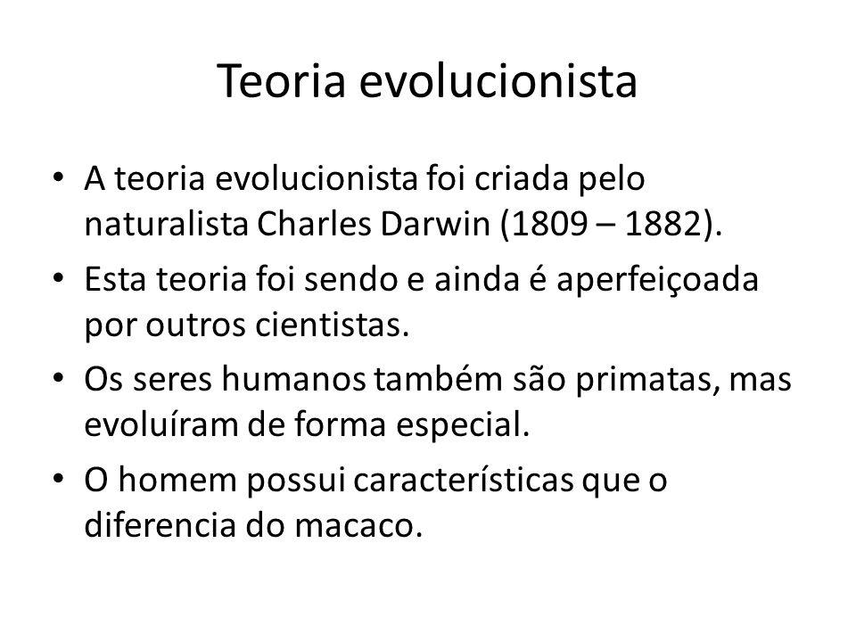 O homem e o macaco teriam uma mesma ascendência a partir da qual as duas espécies se desenvolveram