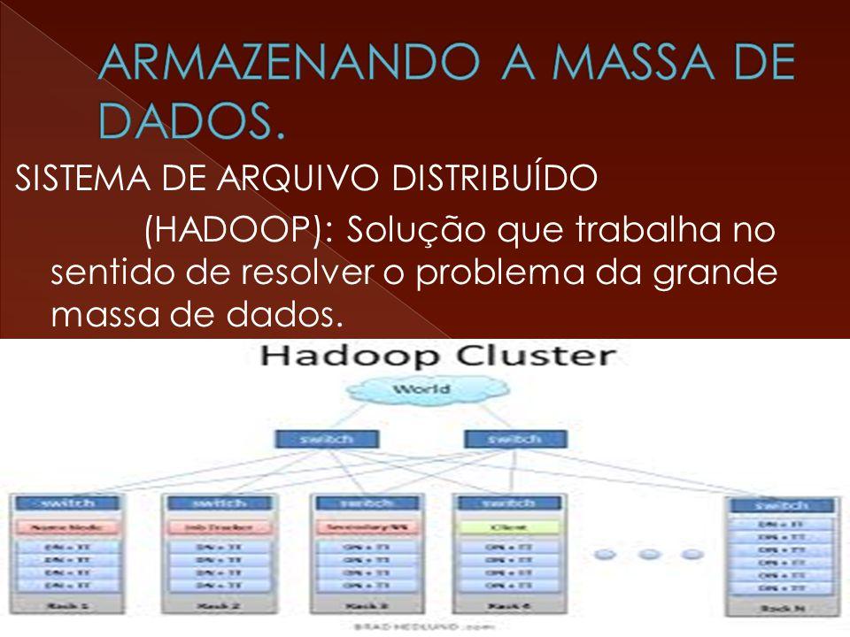 SISTEMA DE ARQUIVO DISTRIBUÍDO (HADOOP): Solução que trabalha no sentido de resolver o problema da grande massa de dados.
