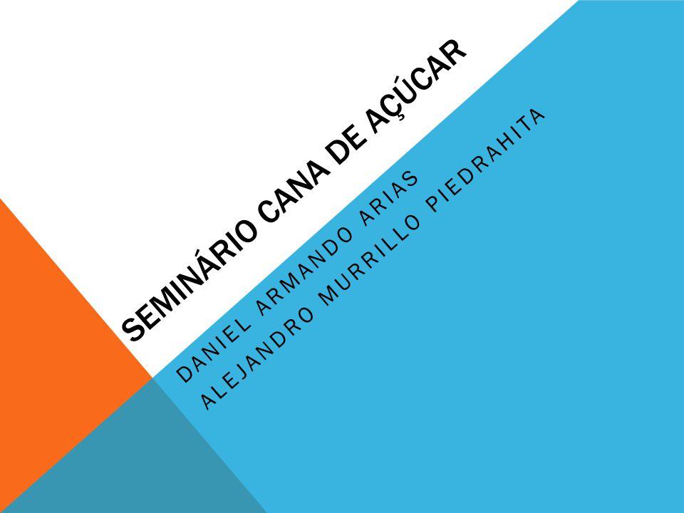 SEMINÁRIO CANA DE AÇÚCAR DANIEL ARMANDO ARIAS ALEJANDRO MURRILLO PIEDRAHITA