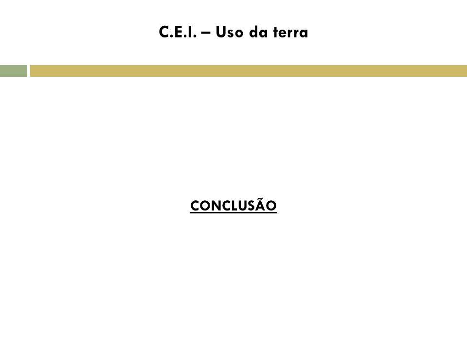 C CONCLUSÃO C.E.I. – Uso da terra