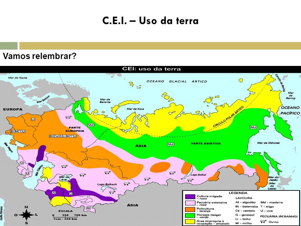 Vamos relembrar? C.E.I. – Uso da terra