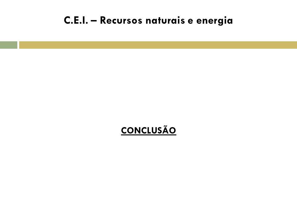 C CONCLUSÃO C.E.I. – Recursos naturais e energia
