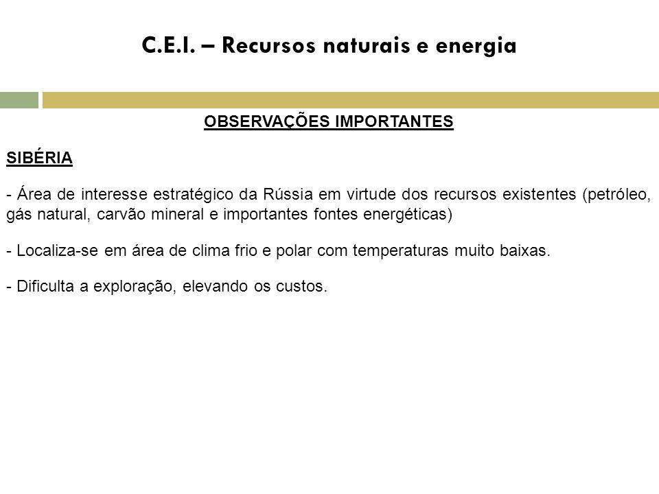 C.E.I. – Recursos naturais e energia OBSERVAÇÕES IMPORTANTES SIBÉRIA - Área de interesse estratégico da Rússia em virtude dos recursos existentes (pet