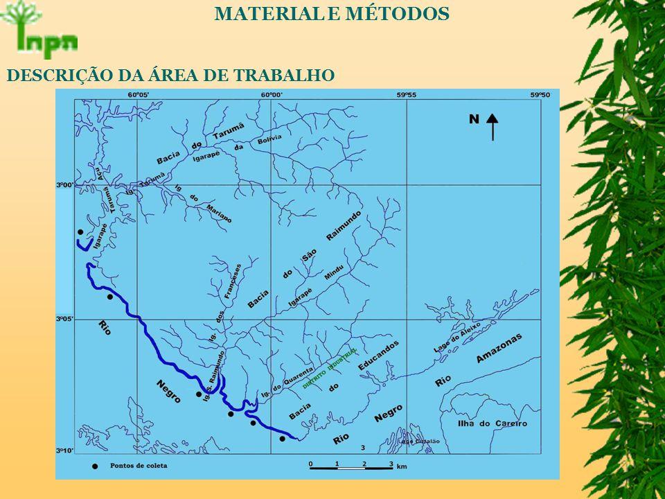 MATERIAL E MÉTODOS DESCRIÇÃO DA ÁREA DE TRABALHO