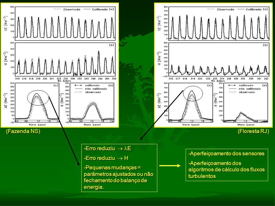 (Fazenda NS) (Floresta RJ) -Erro reduziu  E -Erro reduziu  H -Pequenas mudanças = parâmetros ajustados ou não fechamento do balanço de energia. -A