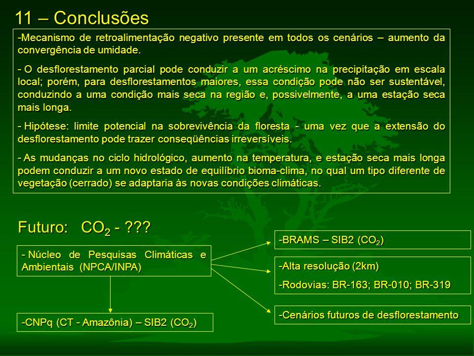 11 – Conclusões -Mecanismo de retroalimentação negativo presente em todos os cenários – aumento da convergência de umidade. - O desflorestamento parci