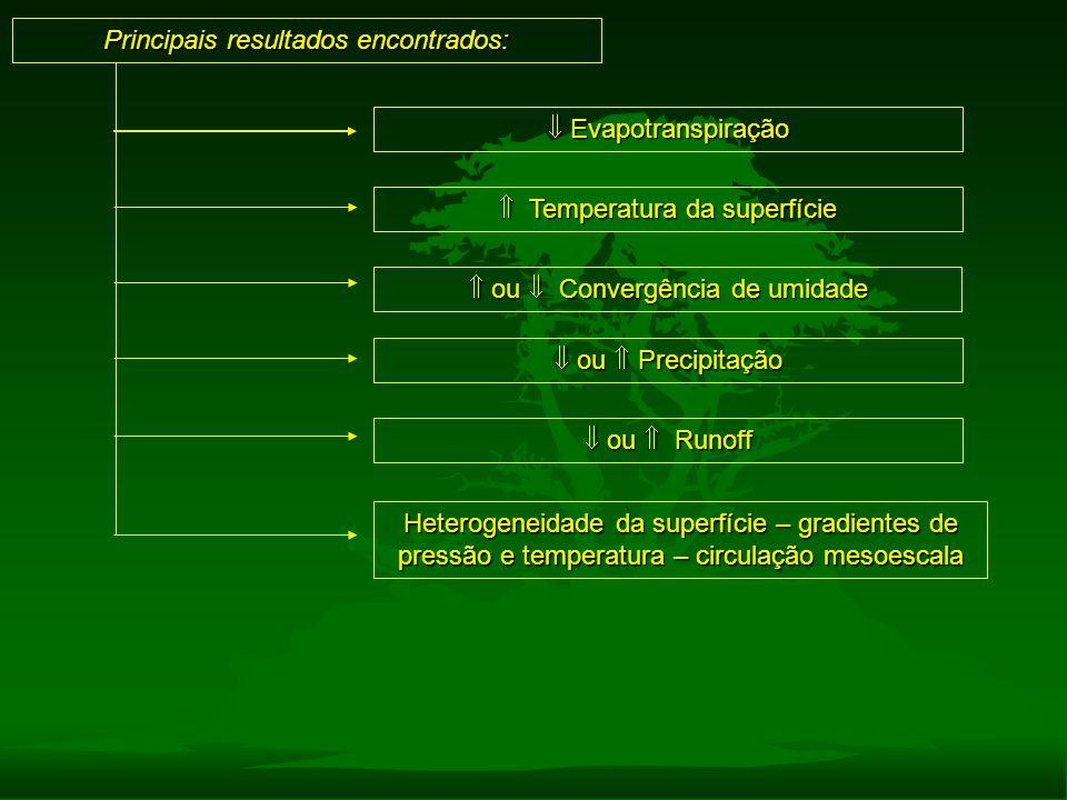 Principais resultados encontrados:  ou  Precipitação  Evapotranspiração  ou  Runoff  Temperatura da superfície  ou  Convergência de umidade He