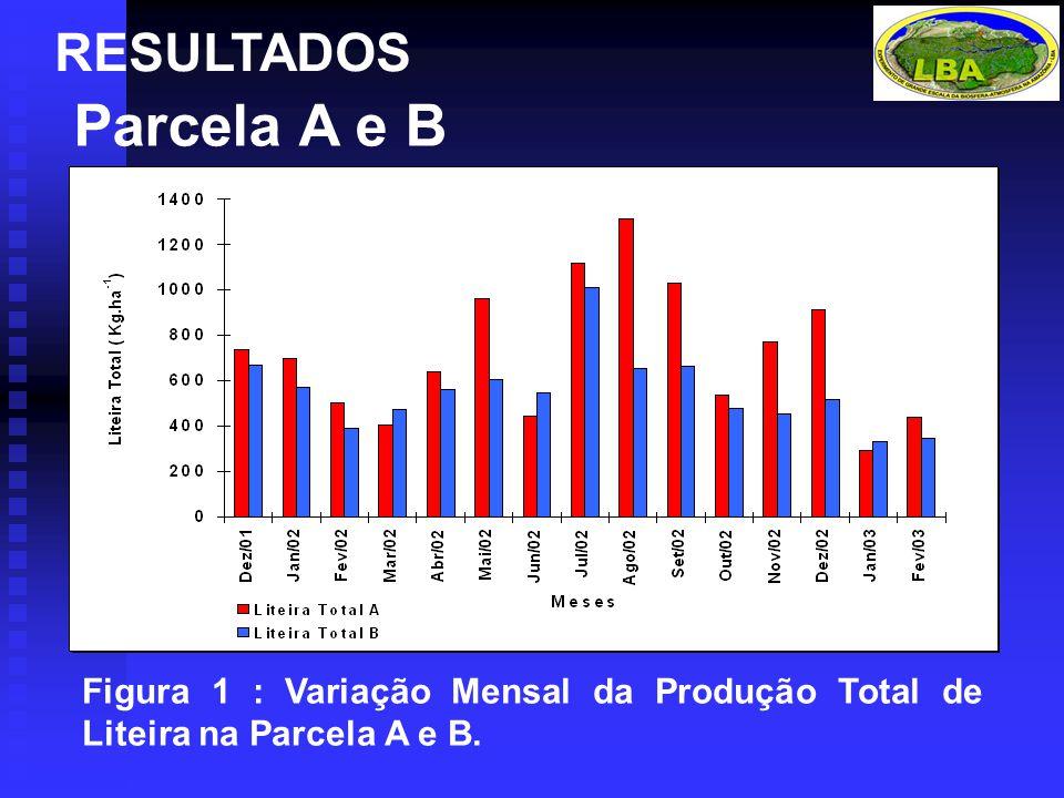 RESULTADOS Parcela A e B Figura 1 : Variação Mensal da Produção Total de Liteira na Parcela A e B.