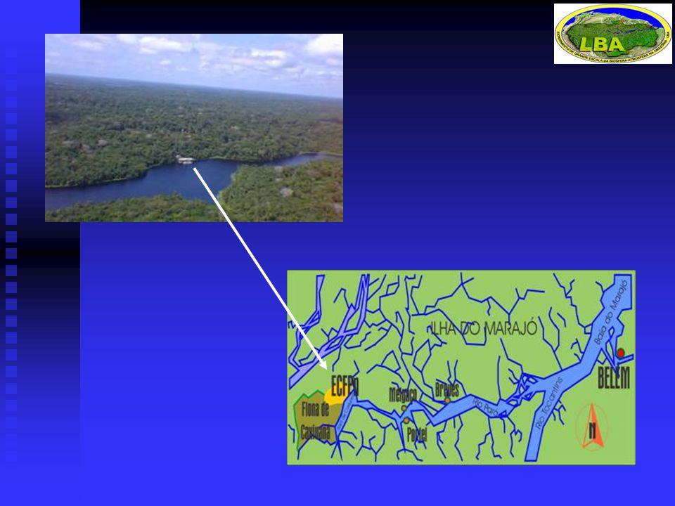 Características Latossolo amarelo arenoso, relevo plano (ALMEIDA et al., 1993) Latossolo amarelo arenoso, relevo plano (ALMEIDA et al., 1993) Clima: temperatura média anual: 26 0 C, UR: 85%, PRP: 3000 mm (MORAES et al., 1997) Clima: temperatura média anual: 26 0 C, UR: 85%, PRP: 3000 mm (MORAES et al., 1997) Floresta densa de terra firme ocupando 95% da área (LISBOA, 1997) Floresta densa de terra firme ocupando 95% da área (LISBOA, 1997) 150-200 de espécies de árvores por hectare 150-200 de espécies de árvores por hectare 500-600 árvores por hectare (DAP  10 cm) 500-600 árvores por hectare (DAP  10 cm) 300-350 m 3 de volume de madeira em pé 300-350 m 3 de volume de madeira em pé MATERIAIS E MÉTODOS