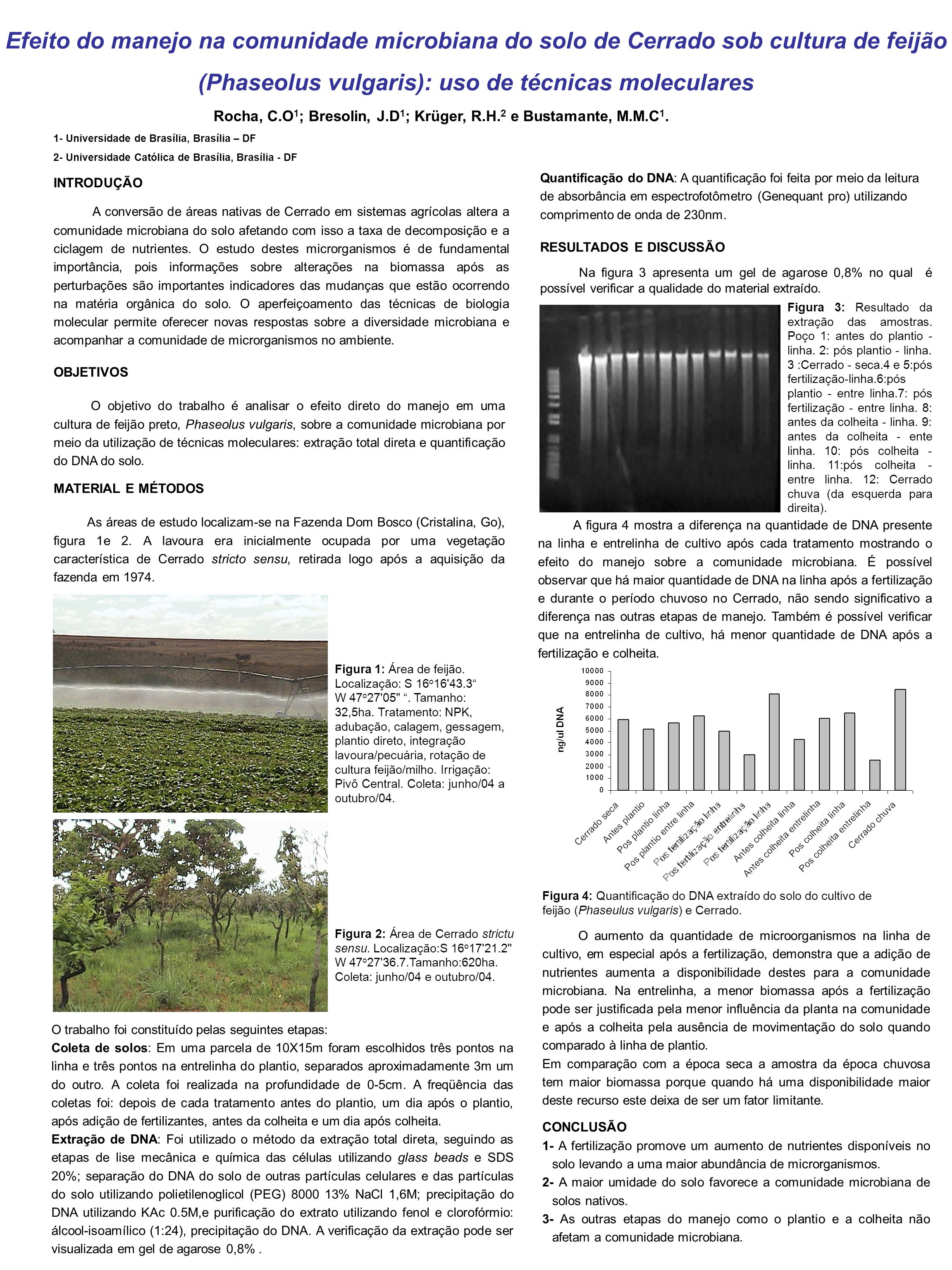 Efeito do manejo na comunidade microbiana do solo de Cerrado sob cultura de feijão (Phaseolus vulgaris): uso de técnicas moleculares Rocha, C.O 1 ; Br