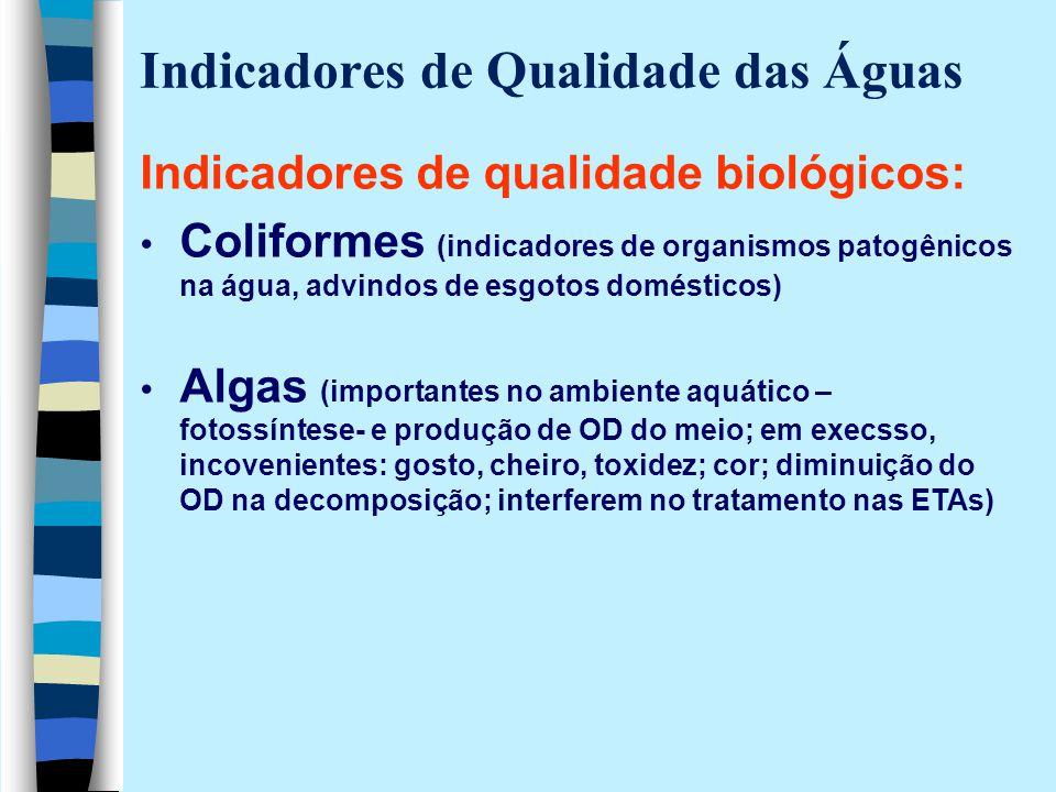 Indicadores de Qualidade das Águas Indicadores de qualidade biológicos: Coliformes (indicadores de organismos patogênicos na água, advindos de esgotos