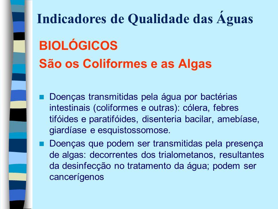 BIOLÓGICOS São os Coliformes e as Algas Doenças transmitidas pela água por bactérias intestinais (coliformes e outras): cólera, febres tifóides e para