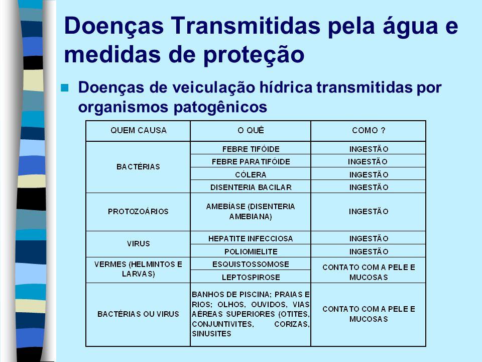 Doenças Transmitidas pela água e medidas de proteção Doenças de veiculação hídrica transmitidas por organismos patogênicos