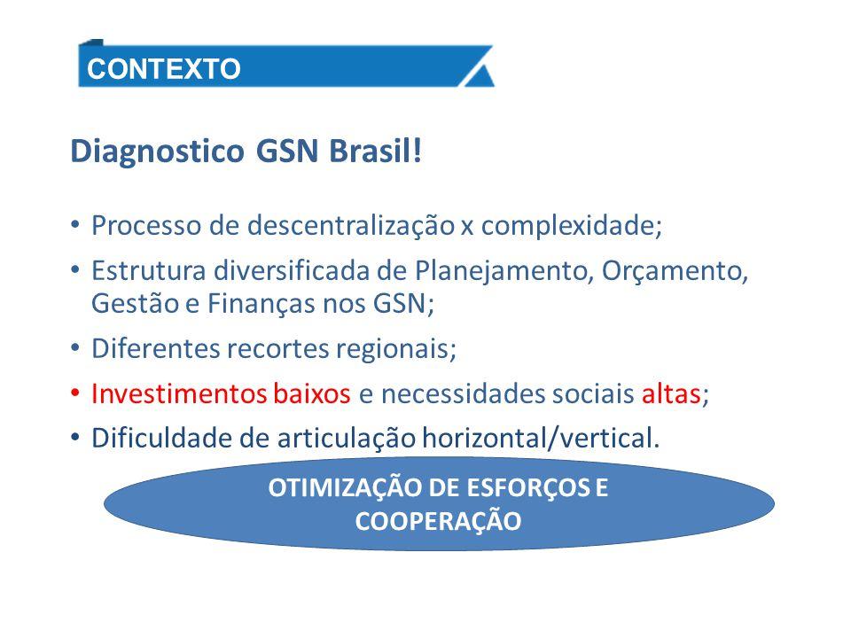 Diagnostico GSN Brasil! Processo de descentralização x complexidade; Estrutura diversificada de Planejamento, Orçamento, Gestão e Finanças nos GSN; Di