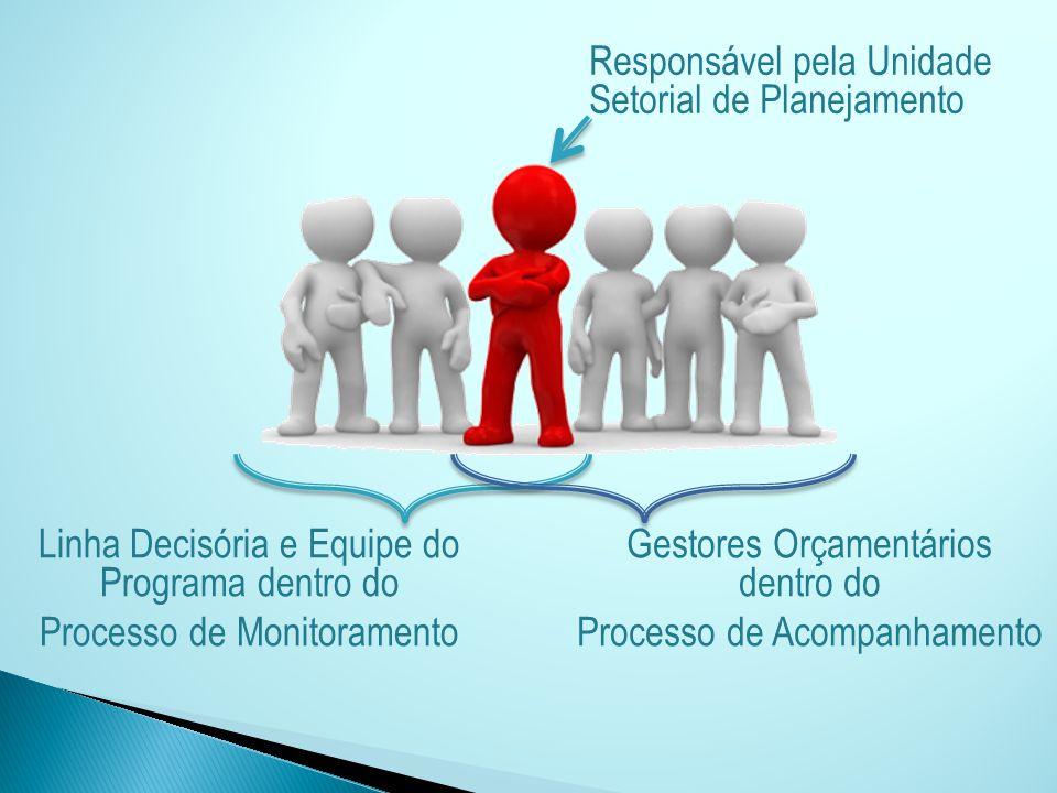 Responsável pela Unidade Setorial de Planejamento Linha Decisória e Equipe do Programa dentro do Processo de Monitoramento Gestores Orçamentários dent