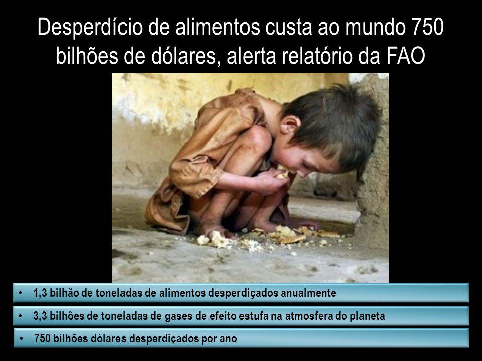 Desperdício de alimentos custa ao mundo 750 bilhões de dólares, alerta relatório da FAO 1,3 bilhão de toneladas de alimentos desperdiçados anualmente