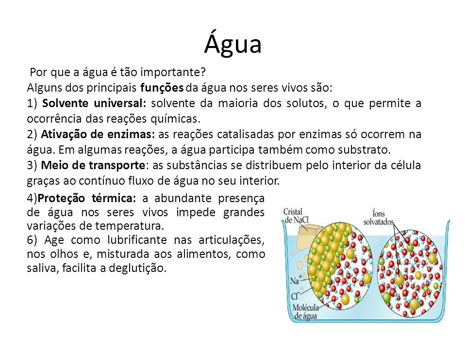Água 4)Proteção térmica: a abundante presença de água nos seres vivos impede grandes variações de temperatura. 6) Age como lubrificante nas articulaçõ