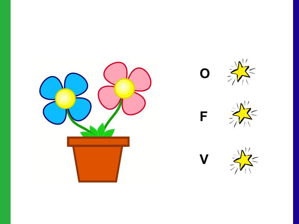 OFVOFV