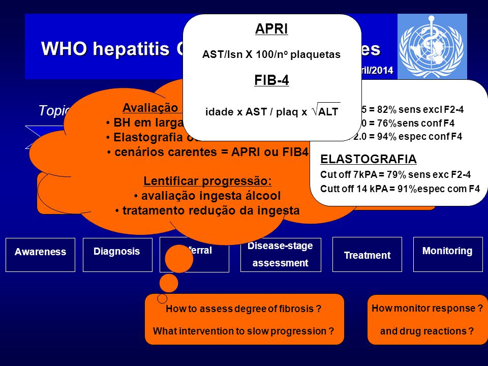 Topics for WHO hepatitis C screening, care and treatment guidelines WHO hepatitis C treatment guidelines EASL, Londres abril/2014 ScreeningCareTreatme