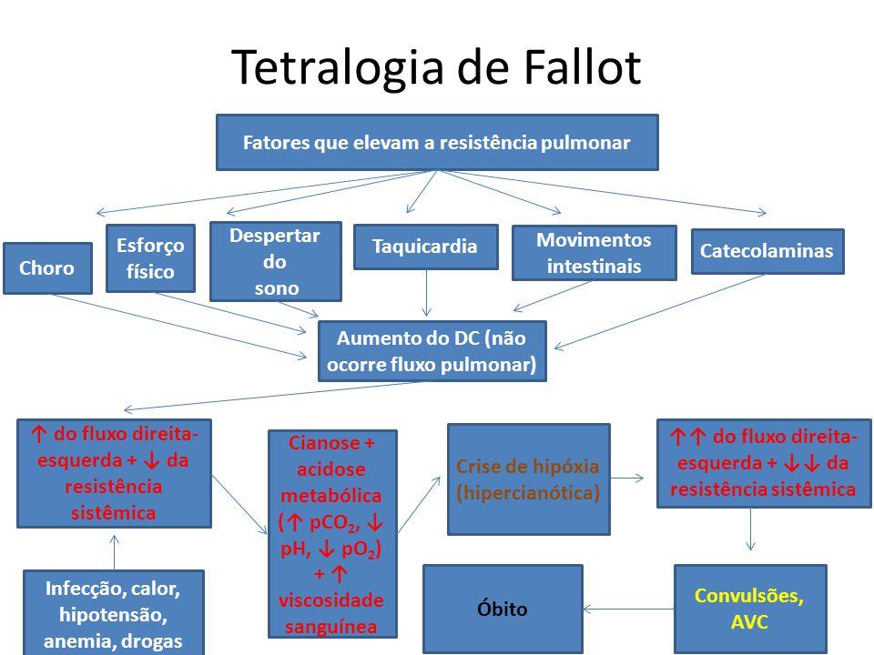 Tetralogia de Fallot Aumento do DC (não ocorre fluxo pulmonar) Fatores que elevam a resistência pulmonar Choro Esforço físico Taquicardia Movimentos i