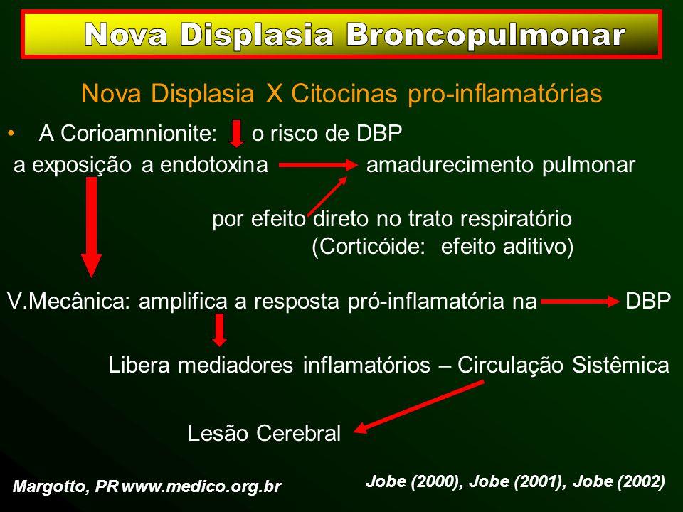 Nova Displasia X Citocinas pro-inflamatórias A Corioamnionite: o risco de DBP a exposição a endotoxina amadurecimento pulmonar por efeito direto no tr