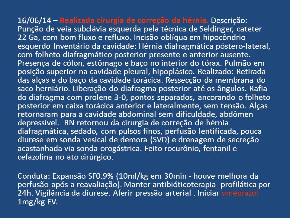 16/06/14 – Realizada cirurgia de correção da hérnia. Descrição: Punção de veia subclávia esquerda pela técnica de Seldinger, cateter 22 Ga, com bom fl