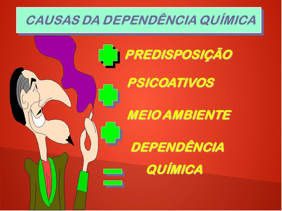 PREDISPOSIÇÃO PREDISPOSIÇÃO PSICOATIVOS PSICOATIVOS MEIO AMBIENTE MEIO AMBIENTE DEPENDÊNCIA DEPENDÊNCIA QUÍMICA QUÍMICA CAUSAS DA DEPENDÊNCIA QUÍMICA