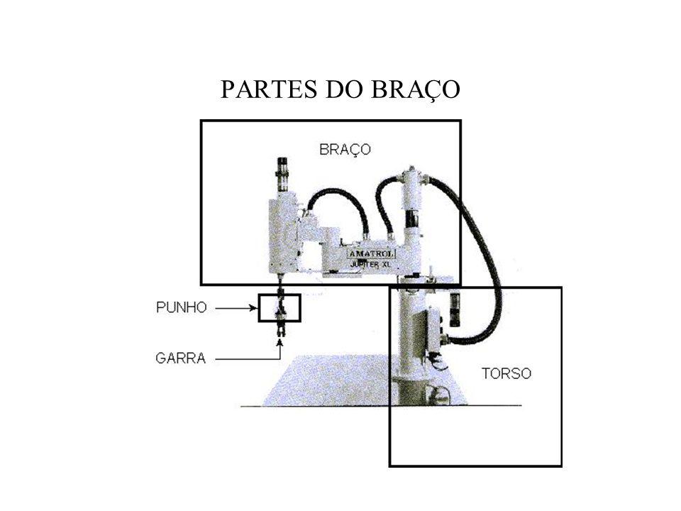 PARTES DO BRAÇO