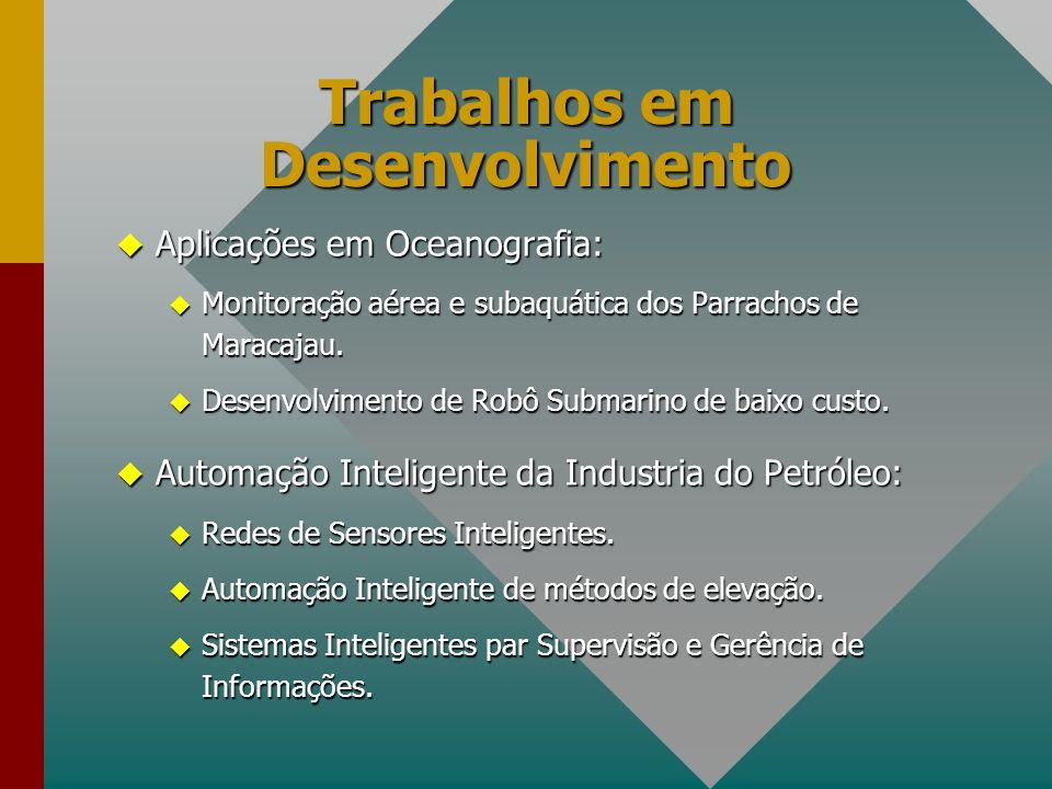 Trabalhos em Desenvolvimento u Aplicações em Oceanografia: u Monitoração aérea e subaquática dos Parrachos de Maracajau. u Desenvolvimento de Robô Sub