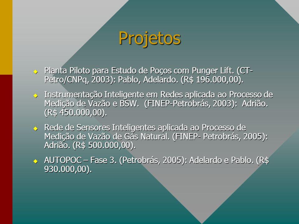 Projetos  Planta Piloto para Estudo de Poços com Punger Lift. (CT- Petro/CNPq, 2003): Pablo, Adelardo. (R$ 196.000,00).  Instrumentação Inteligente