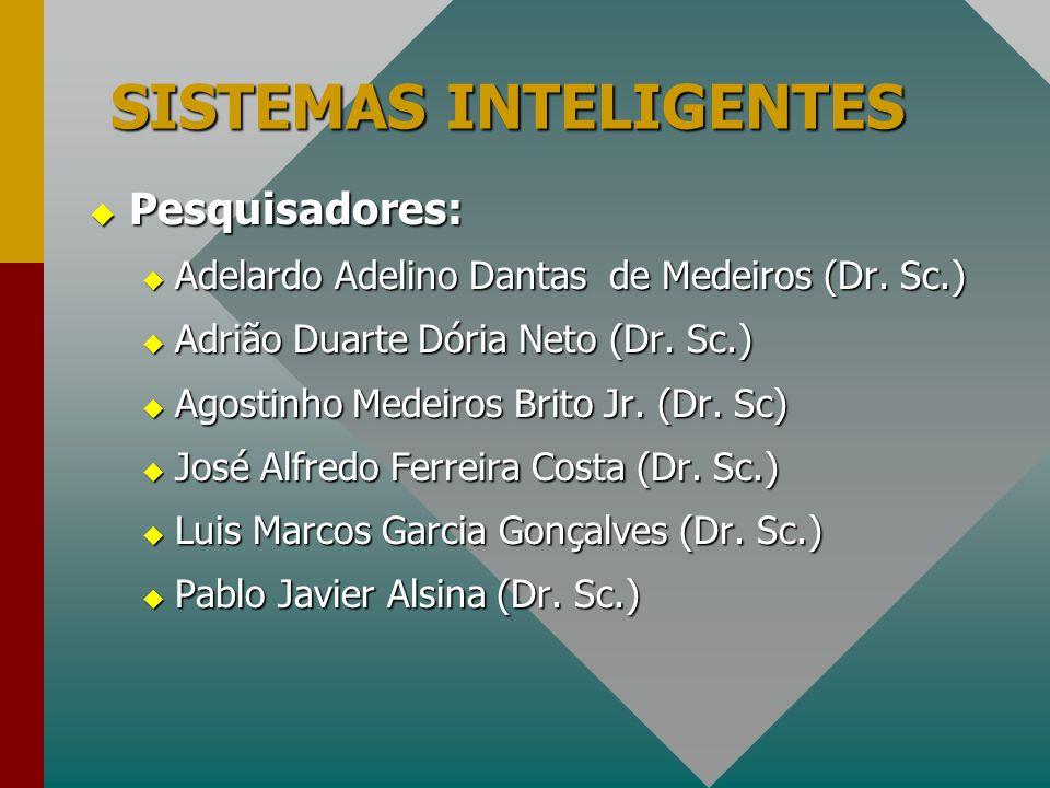 SISTEMAS INTELIGENTES  Pesquisadores:  Adelardo Adelino Dantas de Medeiros (Dr. Sc.)  Adrião Duarte Dória Neto (Dr. Sc.)  Agostinho Medeiros Brito