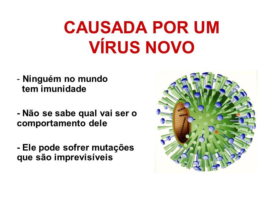 CAUSADA POR UM VÍRUS NOVO - Ninguém no mundo tem imunidade - Não se sabe qual vai ser o comportamento dele - Ele pode sofrer mutações que são imprevis