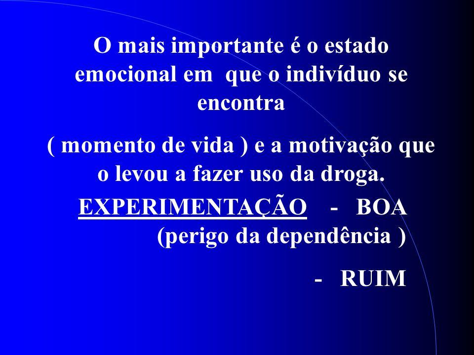 O mais importante é o estado emocional em que o indivíduo se encontra ( momento de vida ) e a motivação que o levou a fazer uso da droga. EXPERIMENTAÇ