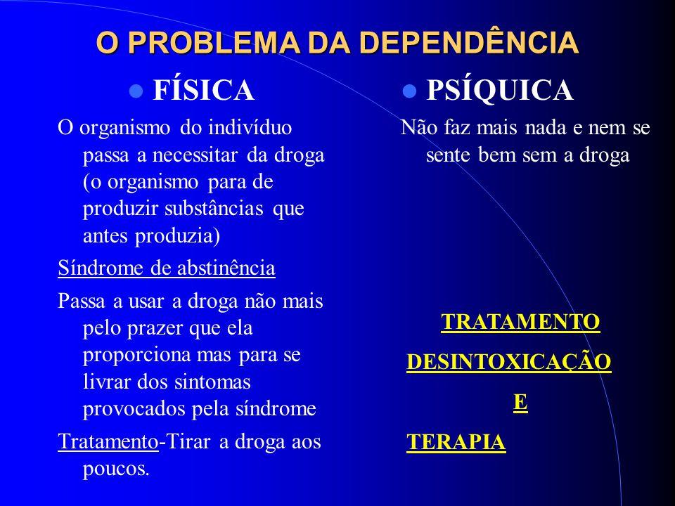 O PROBLEMA DA DEPENDÊNCIA FÍSICA O organismo do indivíduo passa a necessitar da droga (o organismo para de produzir substâncias que antes produzia) Sí