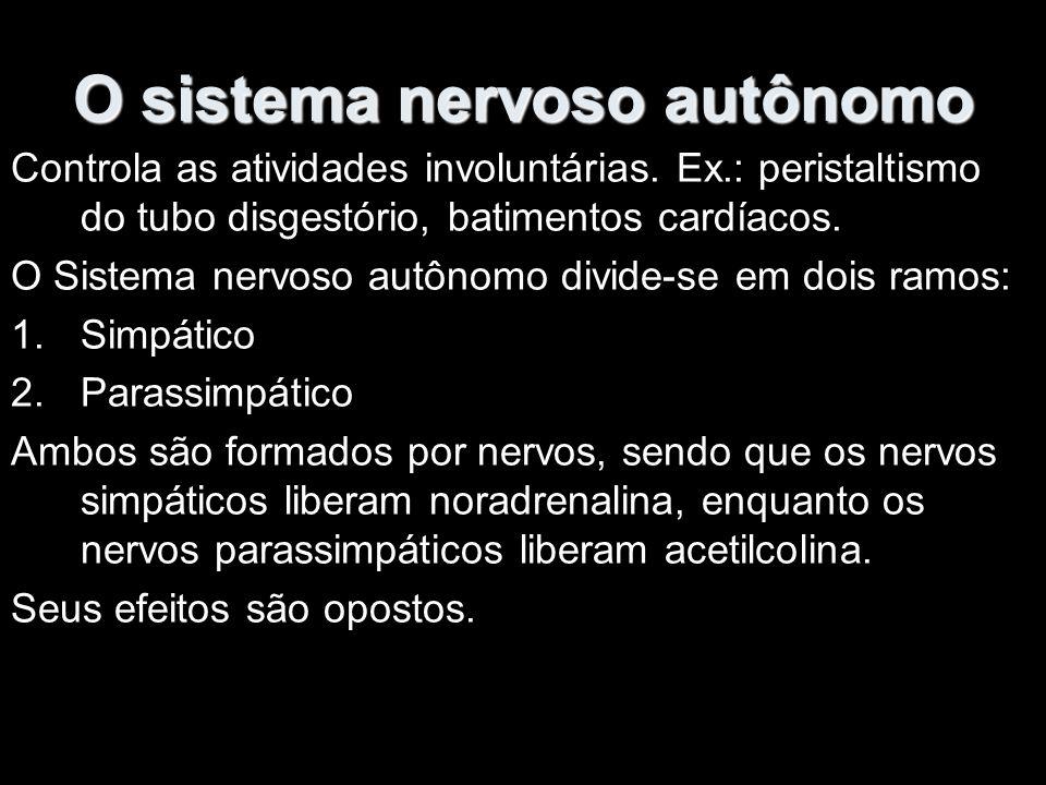 O sistema nervoso autônomo Controla as atividades involuntárias.