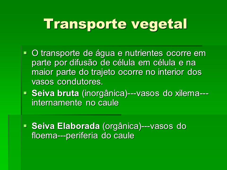 Transporte vegetal  O transporte de água e nutrientes ocorre em parte por difusão de célula em célula e na maior parte do trajeto ocorre no interior