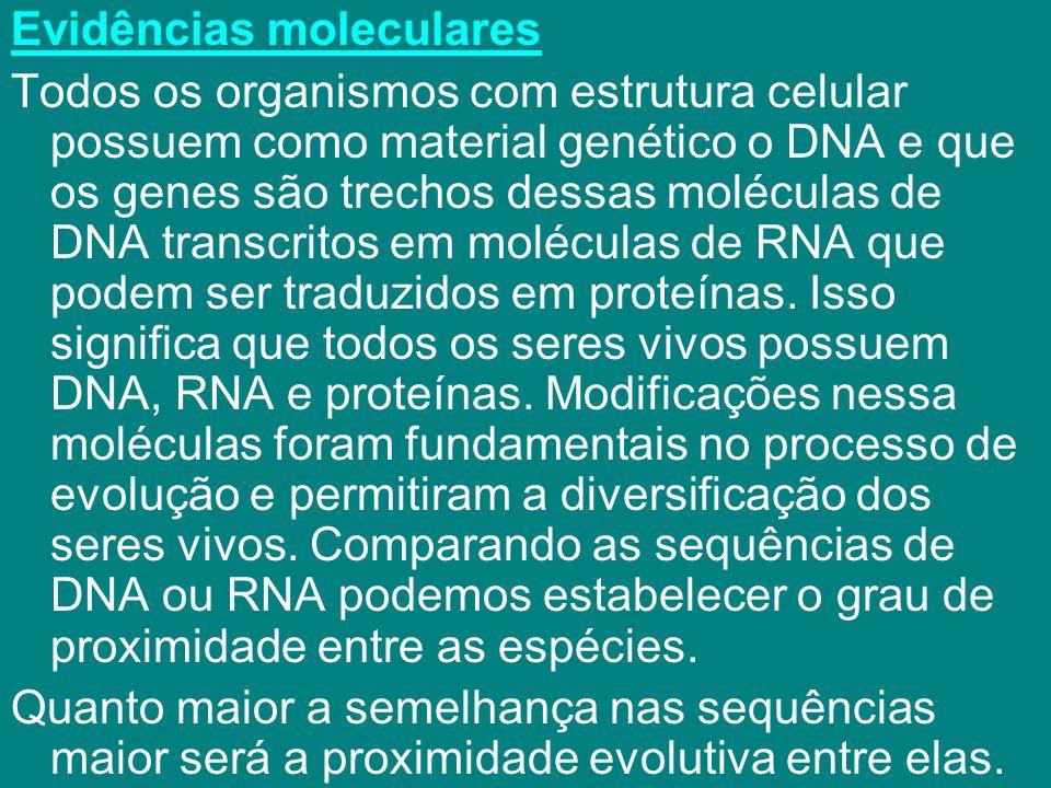 Evidências moleculares Todos os organismos com estrutura celular possuem como material genético o DNA e que os genes são trechos dessas moléculas de D