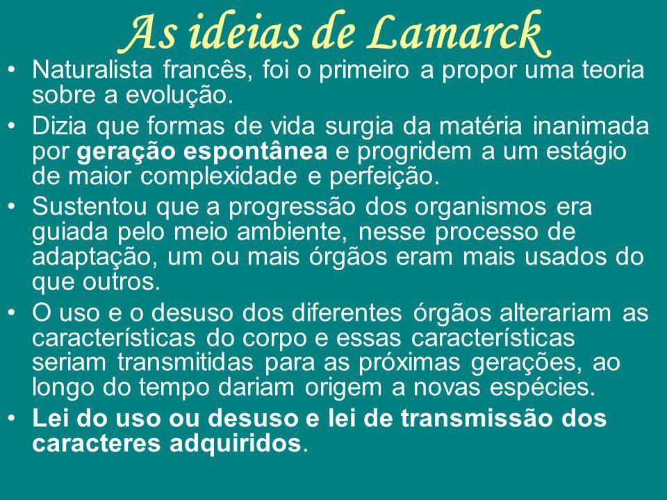 As ideias de Lamarck Naturalista francês, foi o primeiro a propor uma teoria sobre a evolução. Dizia que formas de vida surgia da matéria inanimada po