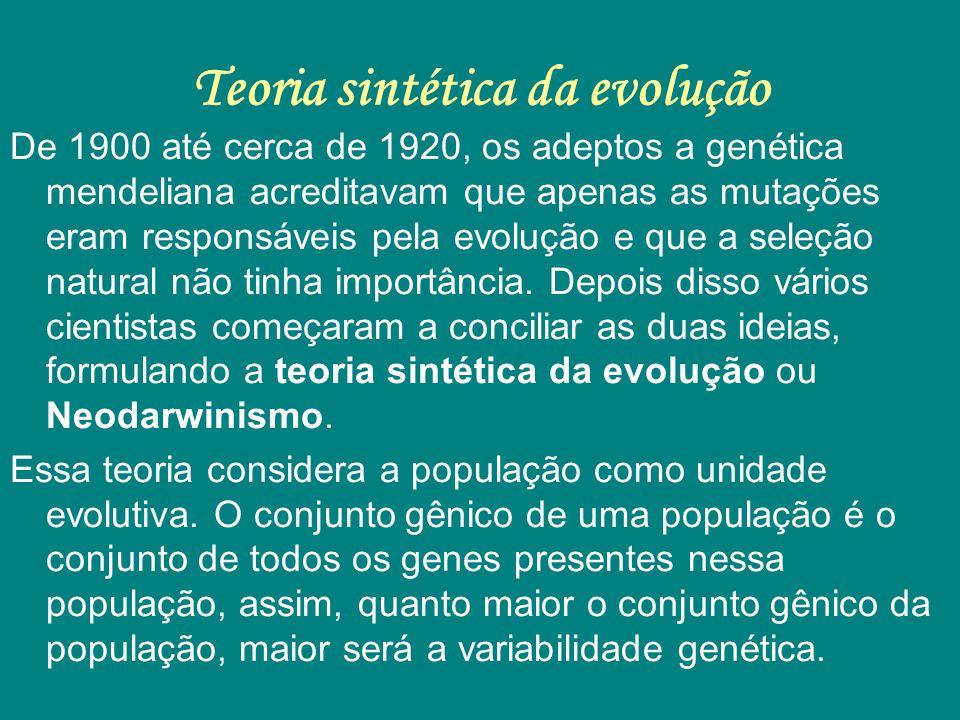 Teoria sintética da evolução De 1900 até cerca de 1920, os adeptos a genética mendeliana acreditavam que apenas as mutações eram responsáveis pela evo