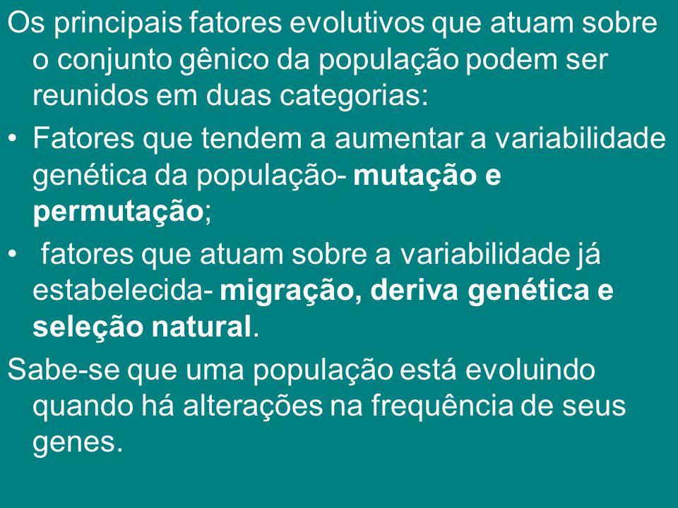 Os principais fatores evolutivos que atuam sobre o conjunto gênico da população podem ser reunidos em duas categorias: Fatores que tendem a aumentar a