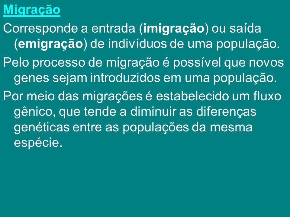 Migração Corresponde a entrada (imigração) ou saída (emigração) de indivíduos de uma população. Pelo processo de migração é possível que novos genes s