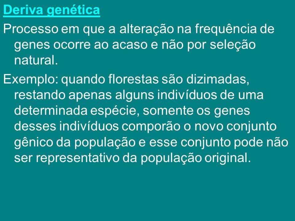 Deriva genética Processo em que a alteração na frequência de genes ocorre ao acaso e não por seleção natural. Exemplo: quando florestas são dizimadas,